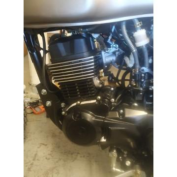 Hanway 200cc motor